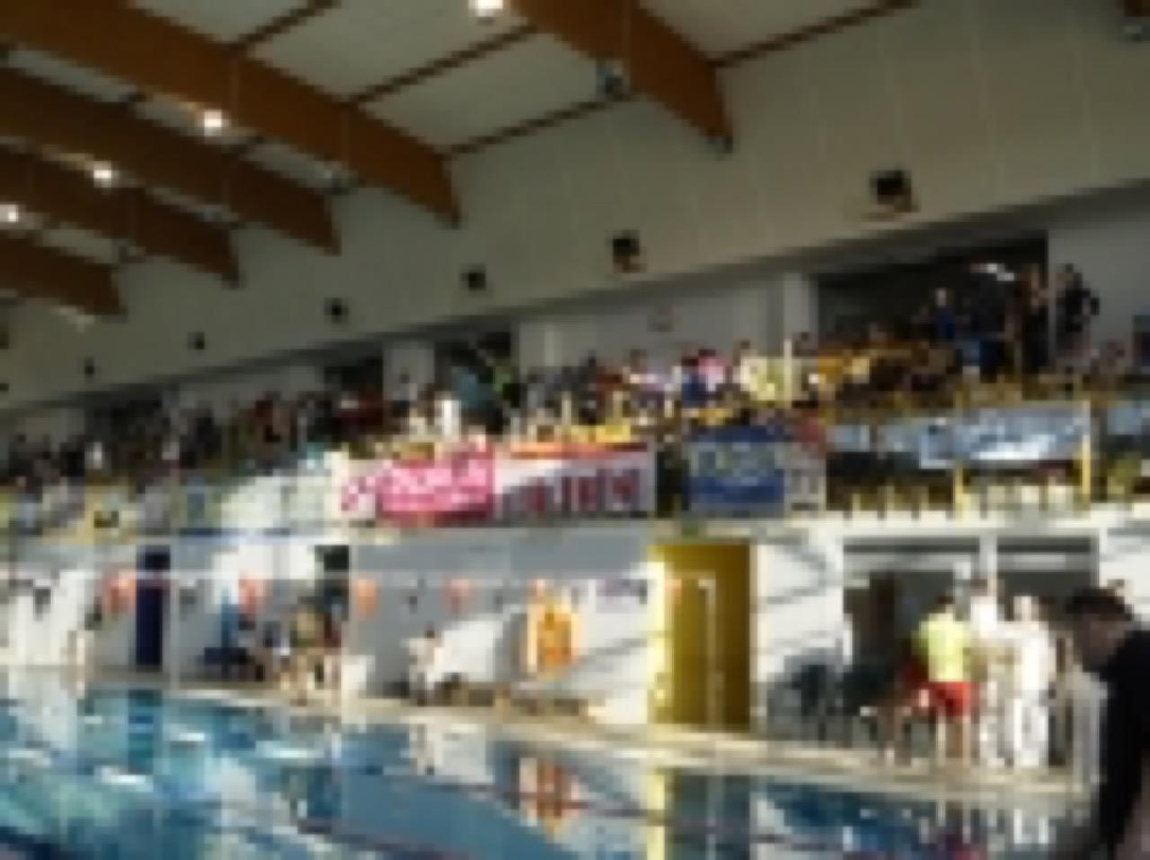 Pływacy: Paniówki (14.11.2015)